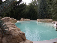 This freeform swimming pool surrounded by natural stone provides a personalalized touch to the garden