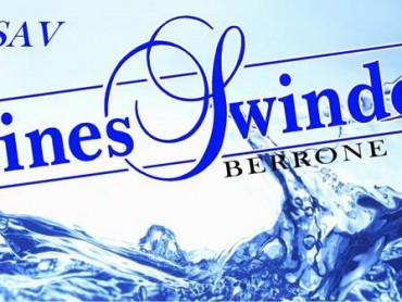 Berrone freres swimmingpool for Piscines swindo